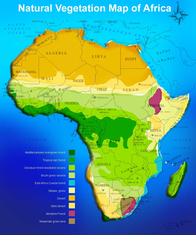 Africa Political Map Africa - Vegetation map of egypt