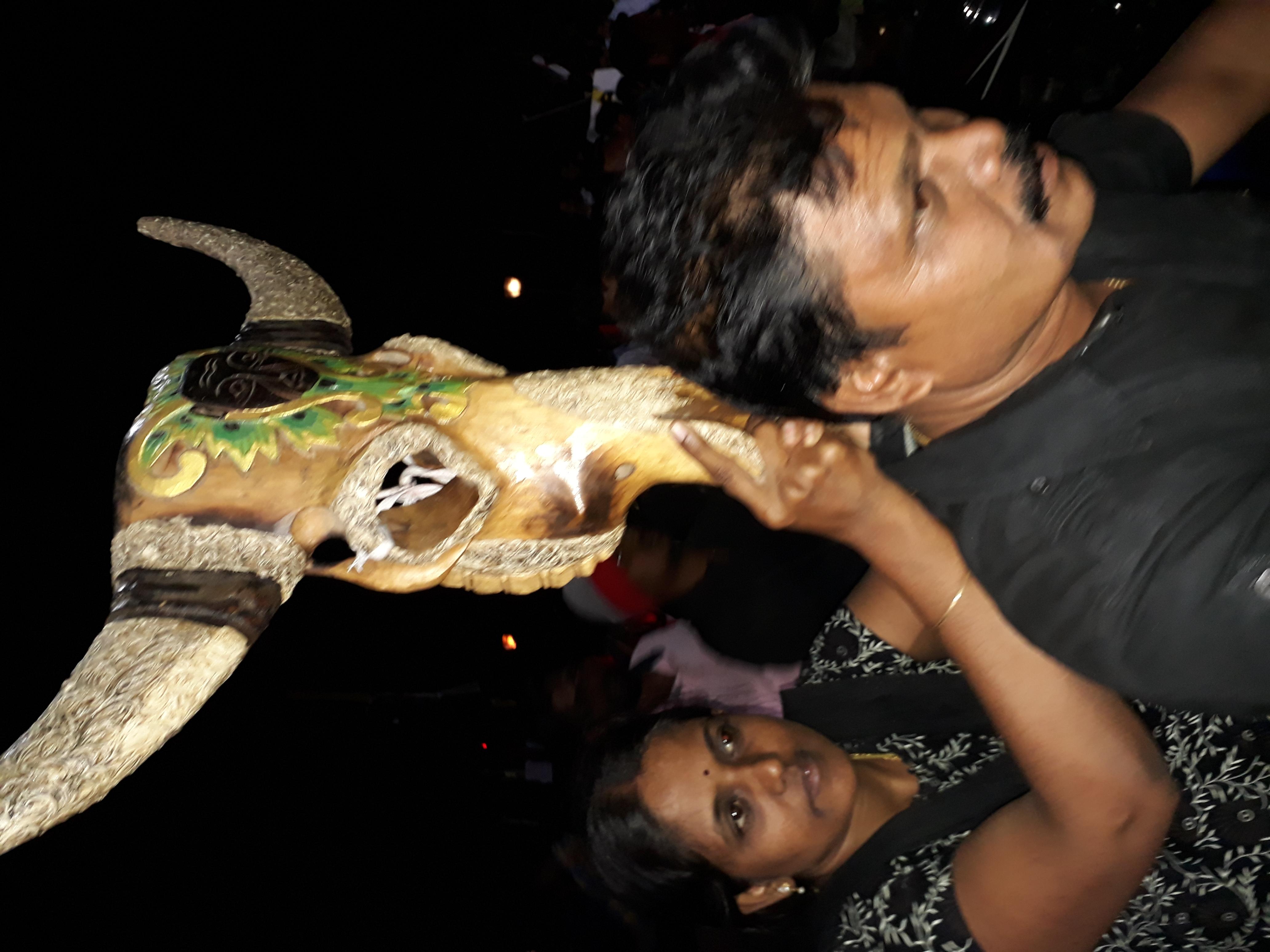 Jallikattu protest in tamilnadu